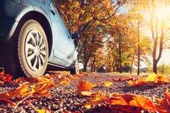 Bil på asfaltvägen i höst royaltyfri bild