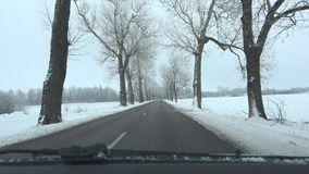 Bil på den tomma väggränden i vinter Dolda träd för frost och för snö 4K arkivfilmer