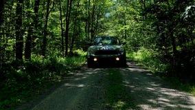 Bil som att närma sig i mörk skog arkivfoto