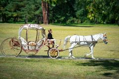 Bila Tserkva, Ucrânia, o 2 de setembro de 2017 o transporte de A e um cavalo branco que passa com um verão estacionam Imagens de Stock Royalty Free