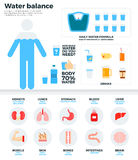 Bilancio idrico umano, concetto di salute Immagine Stock