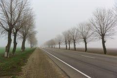 Bilar med billyktor går att försvinna i en tjock dimma vägen Sen höst Jaga Royaltyfria Bilder