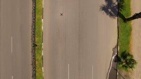 Bilar som kör ner den högkvalitativa vägen med palmträd åt sidan, destination arkivfilmer