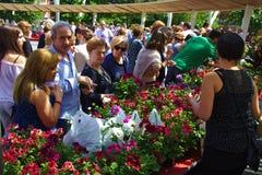 BILBAO, ESPAÑA, EL 31 DE MAYO DE 2015: Flores para la venta en Foto de archivo