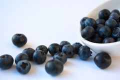 Bilberries Stock Photography