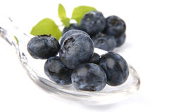 Bilberries. Very fresh and sweet bilberry royalty free stock image