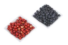 Bilberries and cranberries Royalty Free Stock Photography