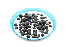 Bilberries in milk Royalty Free Stock Image
