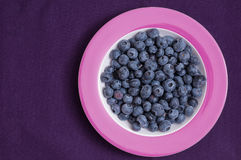 Bilberries on a plate Royalty Free Stock Image