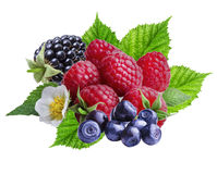 Bilberries,  raspberries and blackberries on white  background. Isolated Stock Photography