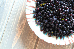 Bilberries in white plate on wooden grey desk. Stock Image