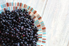 Bilberries in white plate on wooden grey desk. Stock Photos