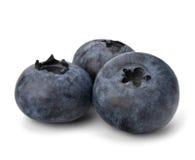 Bilberries or whortleberries cutout Stock Photos