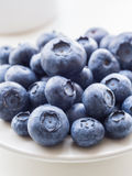 Bilberries Royalty Free Stock Photo