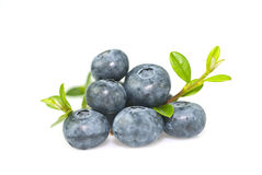 Bilberry. With leaves on white background Stock Photos