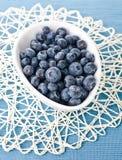 Bilberry stock image