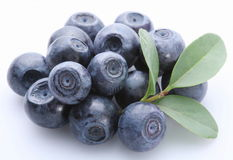 Bilberry Royalty Free Stock Image