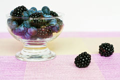 Bilberry and blackberry Stock Images