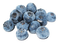 Bilberry close up Stock Photography