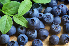 Bilberry Close Up Stock Image