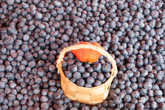 Bilberry on a counter of shop Stock Photos