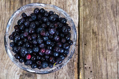 Bilberry in Crystal Bowl on Rustic Background Royalty Free Stock Images