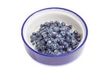 Bilberry dessert with sweetened condensed milk. Dessert made of the fresh wild bilberries and sweetened condensed milk in blue bowl on a white background Royalty Free Stock Images