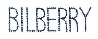 Bilberry font. Bilberries on white background. Blueberry fruit letters Stock Image
