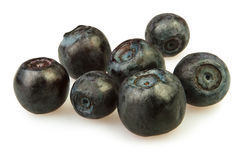 Bilberry group Stock Images