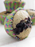 Bilberry muffins Stock Photos