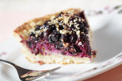 Bilberry pie stock image