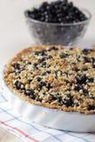 Bilberry pie stock photo