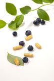 Bilberry pills and berries Stock Photography