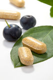 Bilberry pills and berries Stock Image