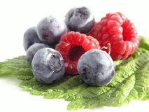 Bilberry and Raspberry Stock Images
