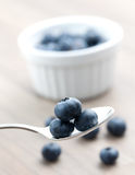Bilberry on spoon Stock Photos