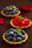 Bilberry tart and strawberries Stock Image