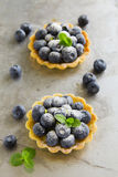 Bilberry tart Stock Photo
