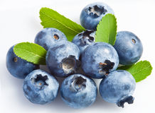 Bilberry on a white Stock Photography