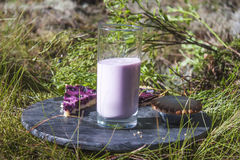Bilberry yoghurt Royalty Free Stock Images