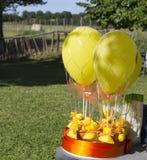 Bild av ballonger för varm luft med ballonger i trädgården Royaltyfri Bild