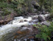Bild av Beaver Creek i Colorado royaltyfri fotografi