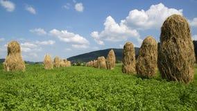 Bild av BUCOVINA nära Voronet Royaltyfri Foto