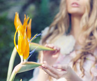 Bild av de rörande tropiska blommorna för dam royaltyfri bild