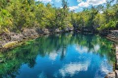 Bild av den djupa sjösidagrottan med den tropiska fisken och gröna träd Cueva de los Peces Arkivbilder