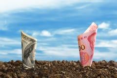 Bild av den Kina Yuan sedeln och US dollarsedeln överst av jord för affären, besparing, tillväxt, ekonomiskt begrepp royaltyfri foto