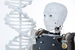 Bild av den mänskliga genetiska koden och roboten Arkivbild