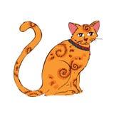 Bild av den orange katten som isoleras på vit bakgrund Royaltyfri Foto