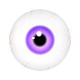 Bild av den realistiska bollen för mänskligt öga med den färgrika eleven, iris white för vektor för bakgrundsillustrationhaj Arkivbild