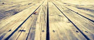 bild av den wood tabellen för perspektiv Royaltyfria Foton